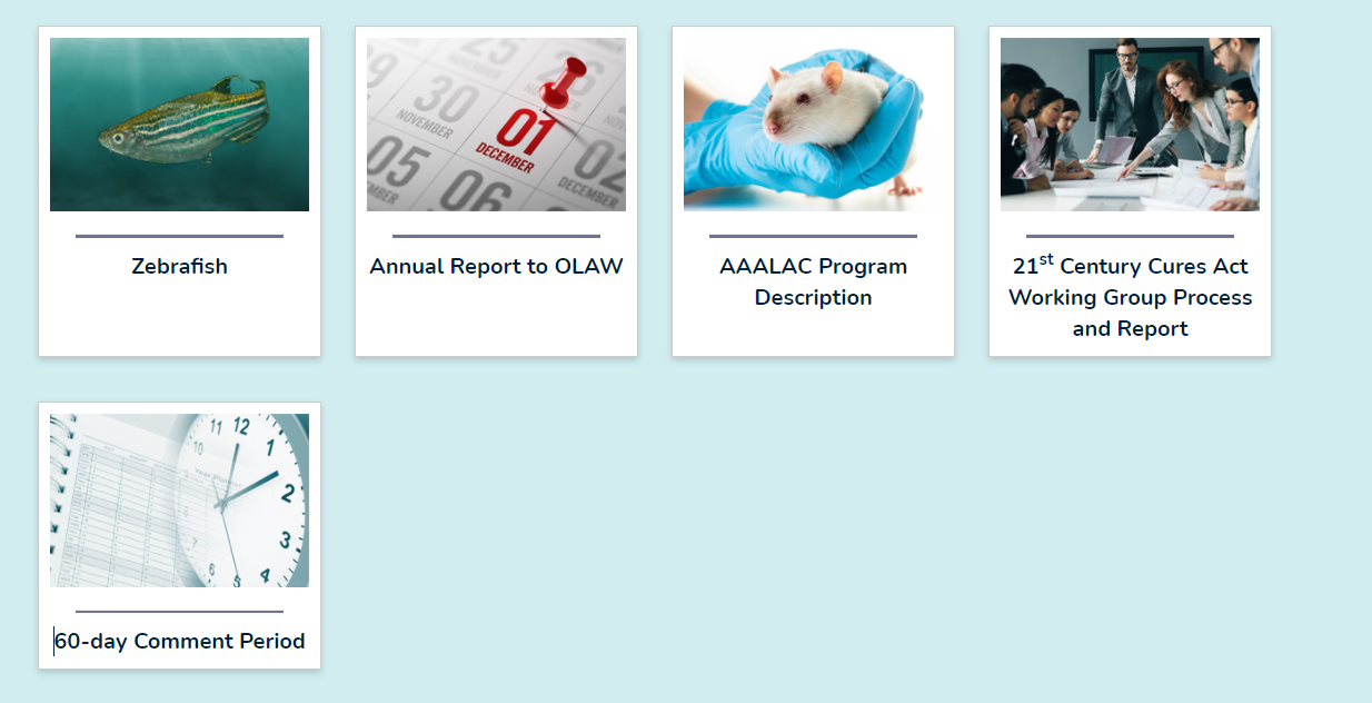 Screenshot of the 21st Century Cures Act subpages currently available.