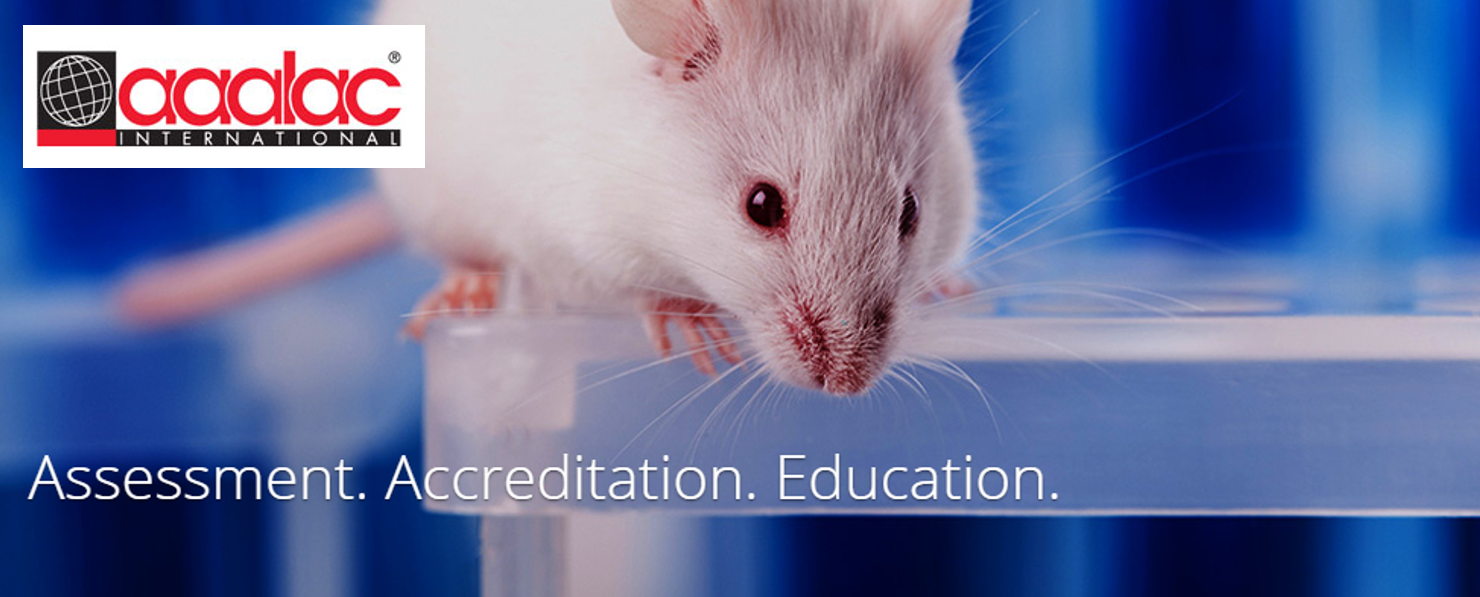 """Picture of a lab mouse with the words """"Assessment. Accreditation. Education."""" And the AAALAC Logo"""